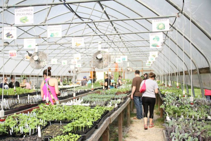 Greenhouse Installation At Hope Farm Louisville Grows